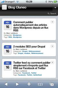 wptouch Crer une version mobile de votre blog Wordpress dans le style Iphone    Cluneo, web marketing et web performance